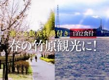 cms_spring