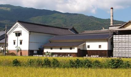 morikawa_1