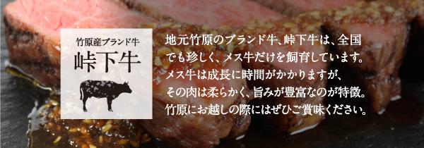 taoshita_setu