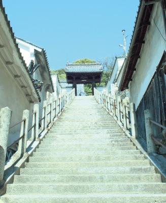 普明閣に続く長い階段